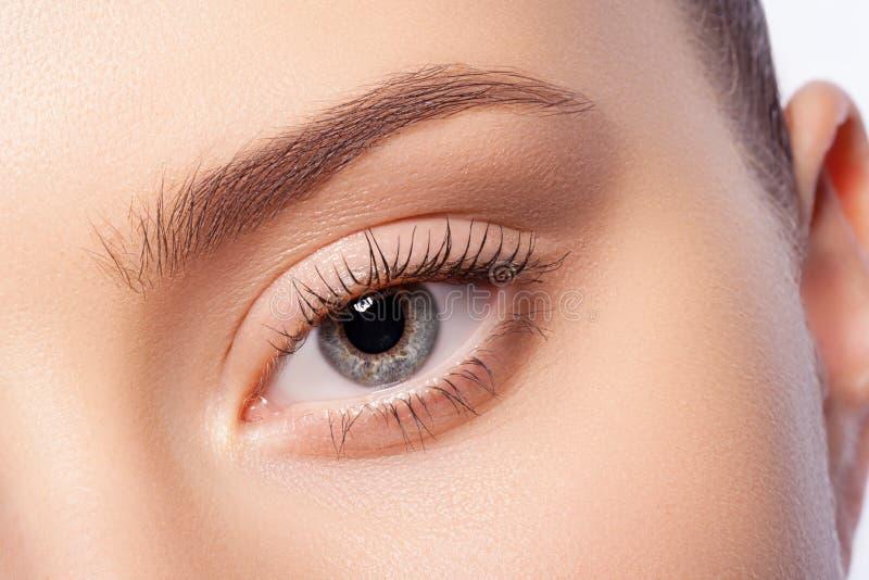 Естественный состав глаза стоковое изображение rf