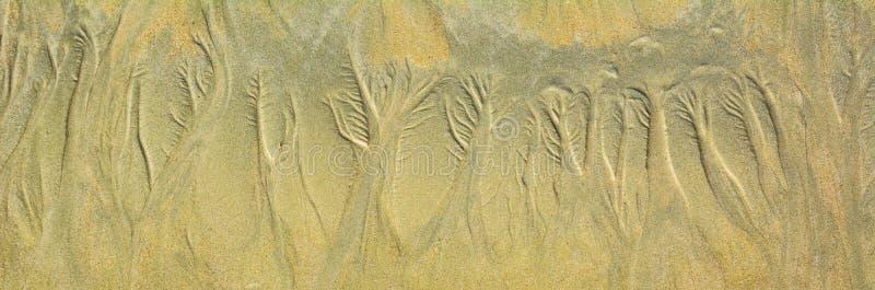 Естественный цветочный узор песка на плоском песчаном пляже во время малой воды стоковое изображение
