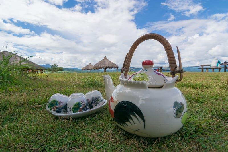 естественный чай стоковое изображение