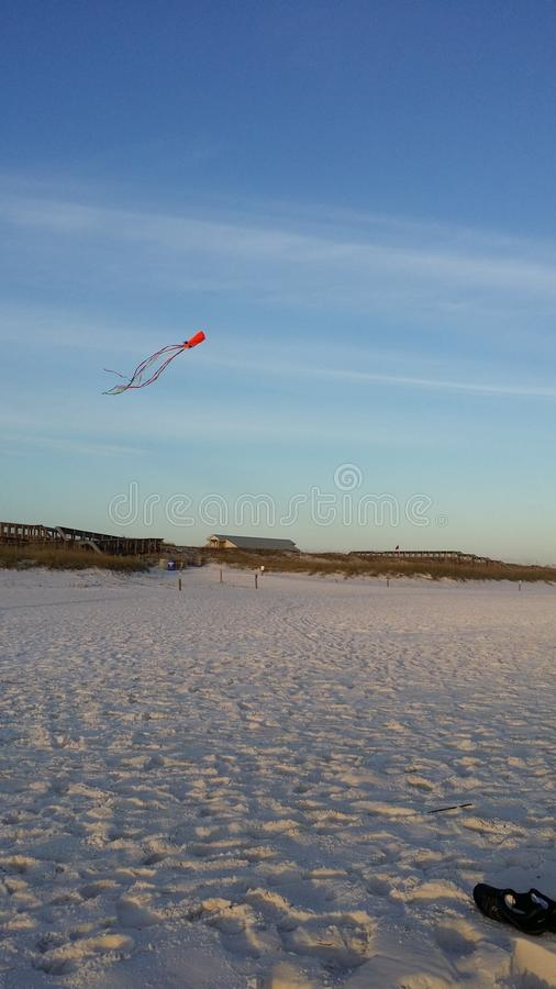 летать высоко стоковое изображение rf
