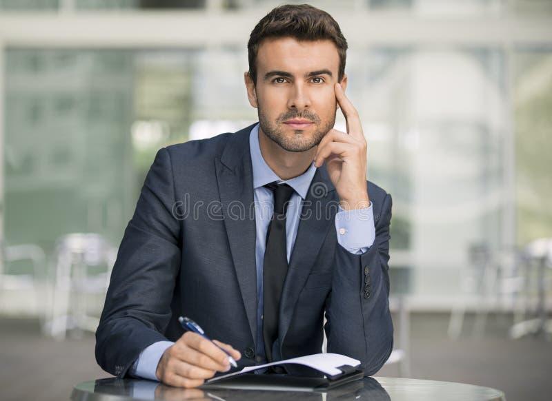 детеныши бизнесмена красивые стоковое фото