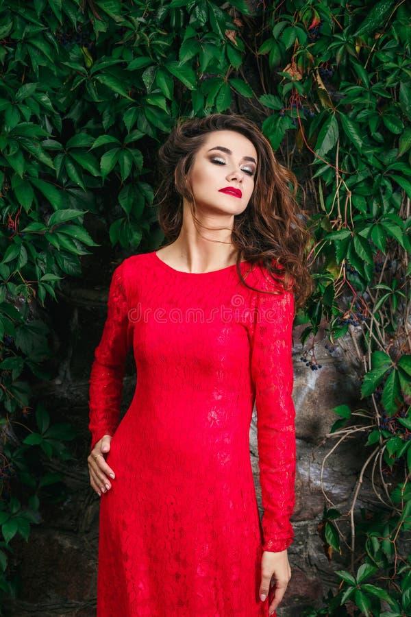 детеныши женщины красивейшего платья красные стоковое изображение