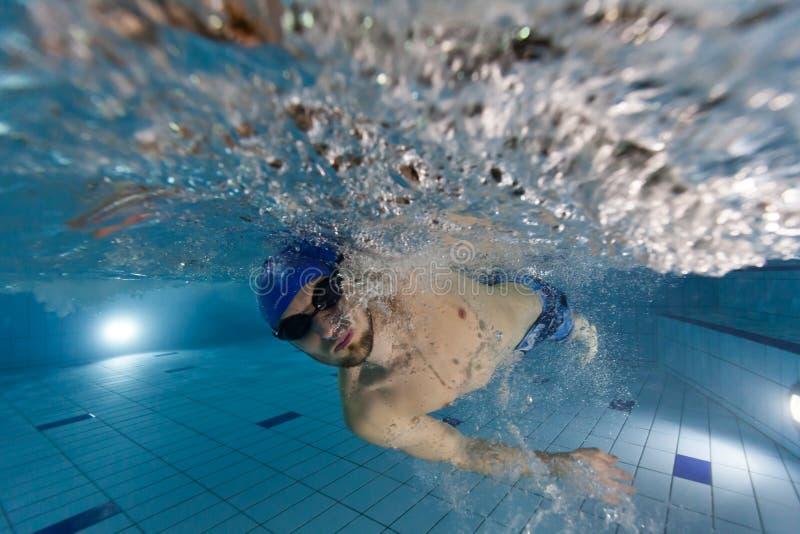 детеныши заплывания бассеина человека стоковые фотографии rf