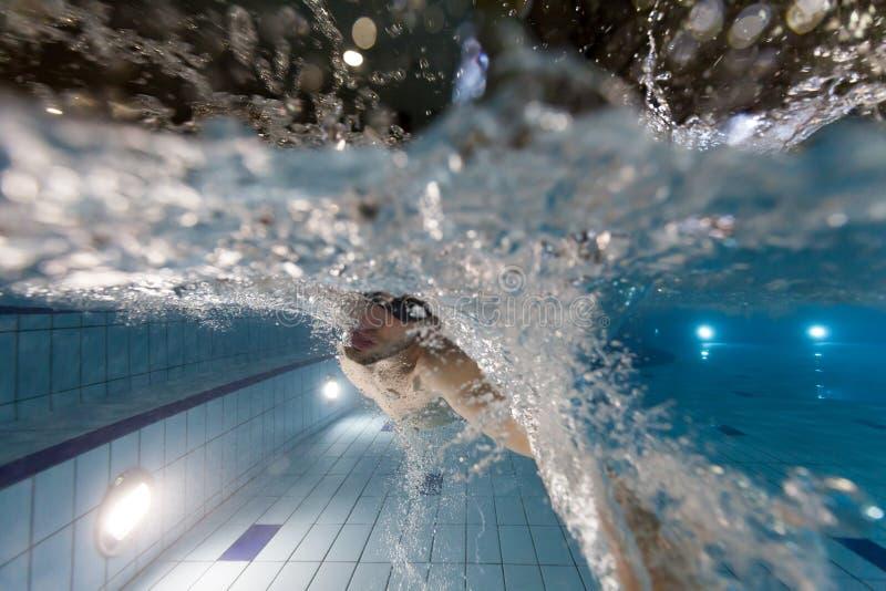 детеныши заплывания бассеина человека стоковое фото rf