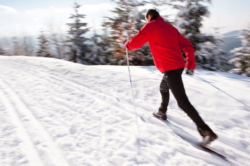 детеныши катания на лыжах человека страны перекрестные стоковая фотография