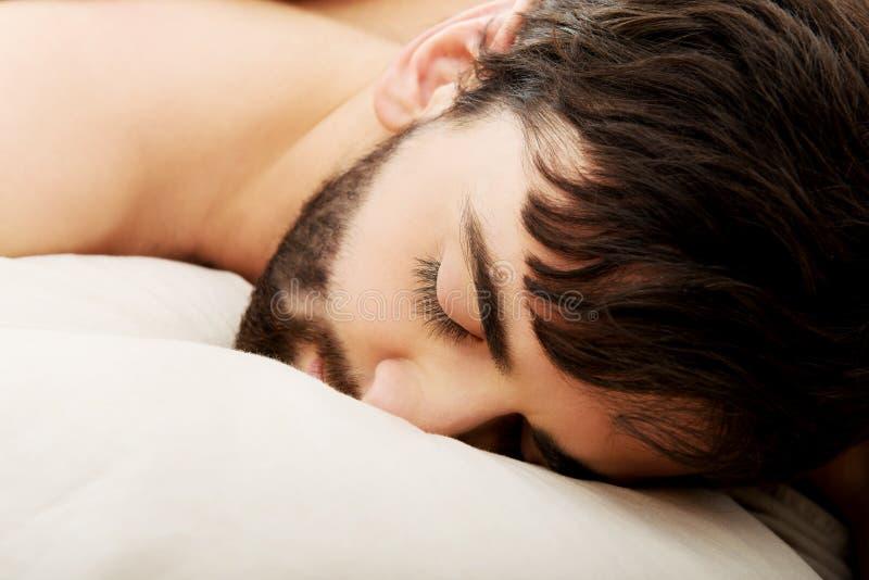 детеныши спать человека кровати стоковые фото