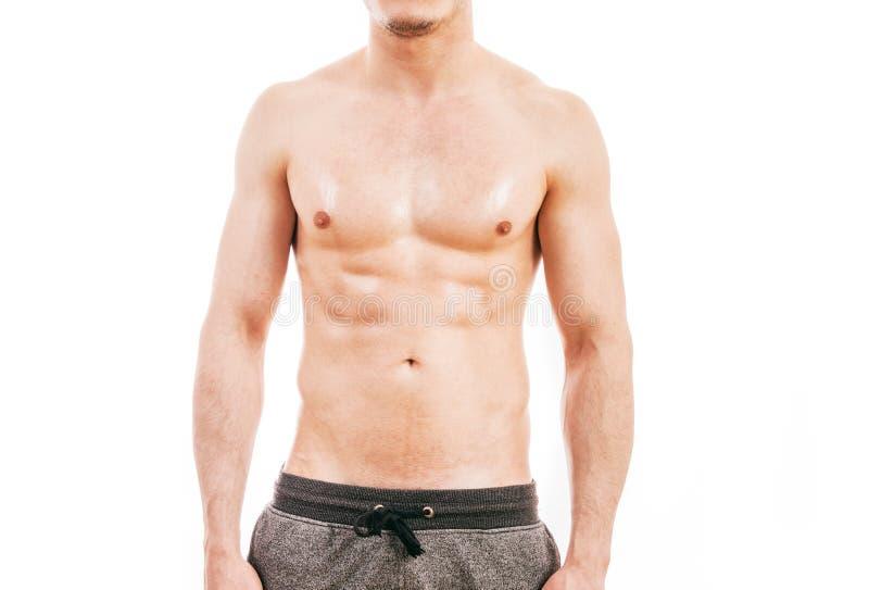 детеныши человека мышечные стоковое изображение rf