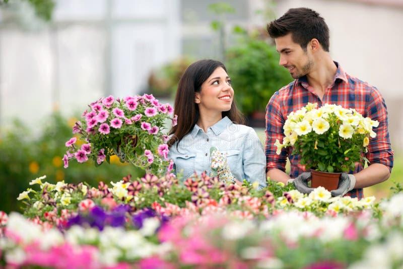 детеныши людей сада florists садовничая сь работая стоковые изображения