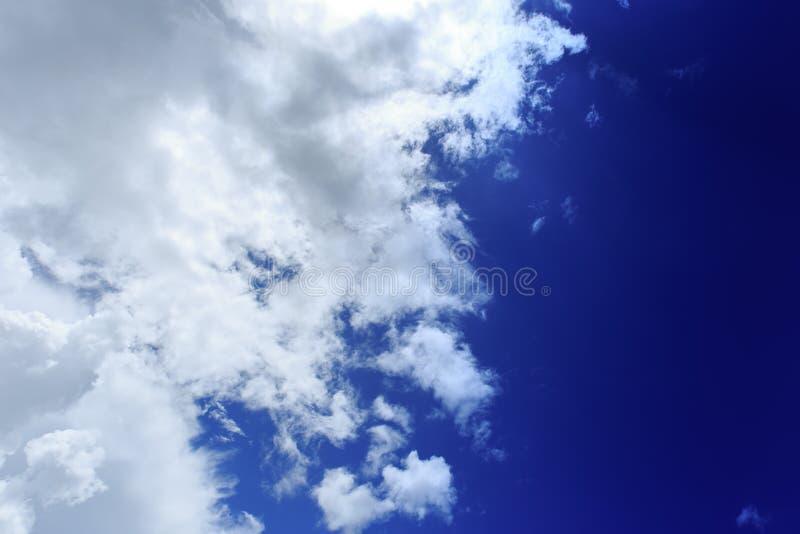 лето голубого неба стоковые фото