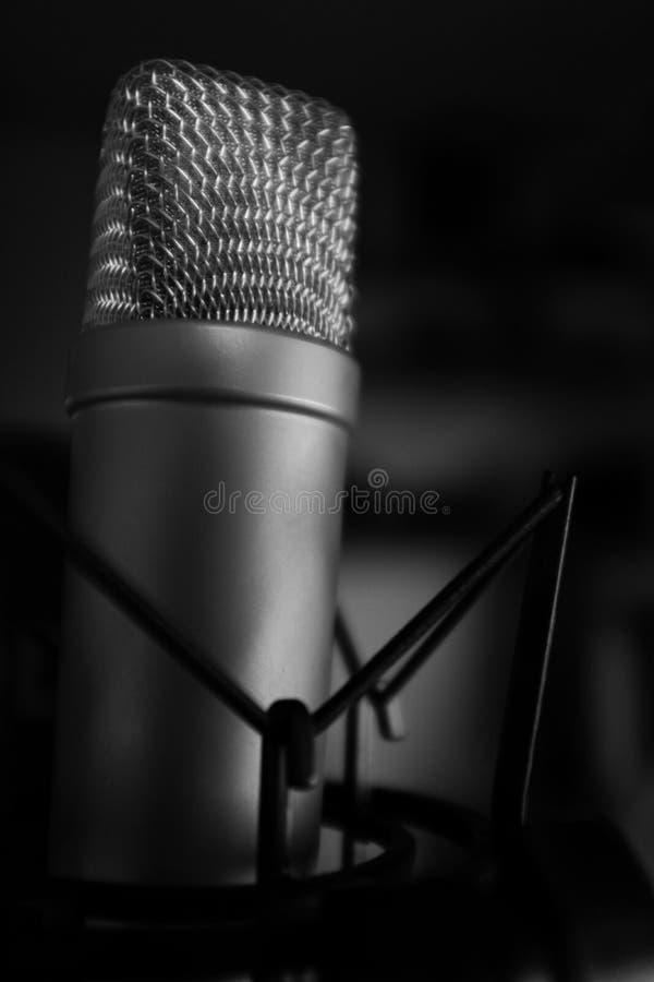 Ехал микрофон condensor кардиоиды NT1 стоковое фото rf