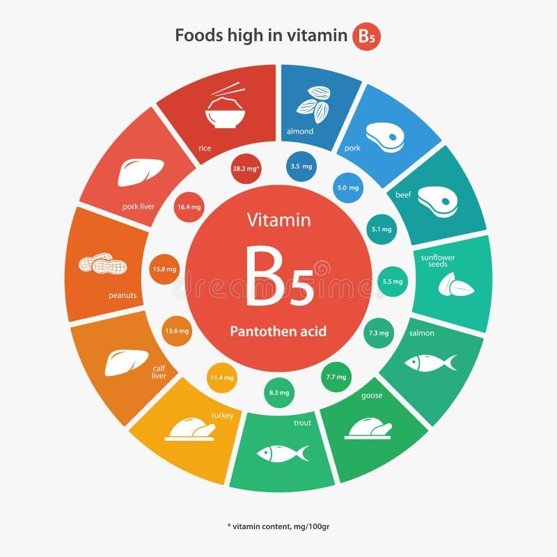 Еда высокая в витамине B5 иллюстрация вектора