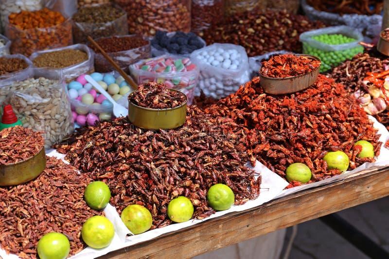 Еда насекомых в Мексике стоковое изображение rf