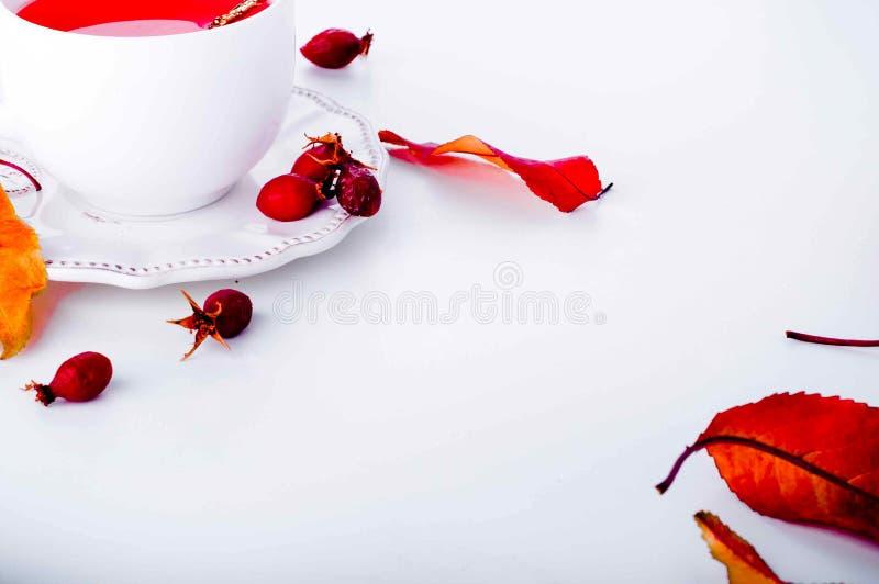 еда темы чая здоровой иллюстрации вальм розовой стоковое изображение rf