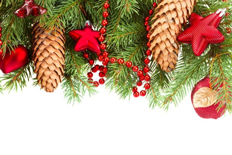 Ель с красными украшениями и конусами рождества стоковые изображения rf