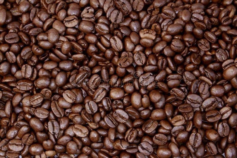 Жареные кофейные бобы стоковые изображения