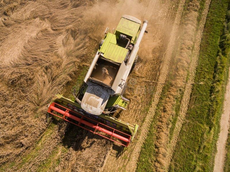 Жатка зернокомбайна - вид с воздуха современной жатки зернокомбайна на сборе пшеницы на золотом пшеничном поле в лете стоковое фото rf