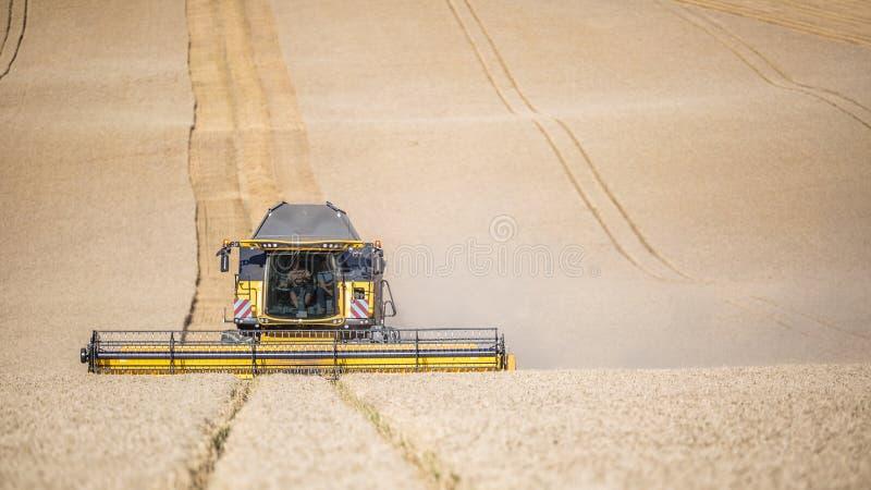 Жатка зернокомбайна в работе на пшеничном поле стоковое фото