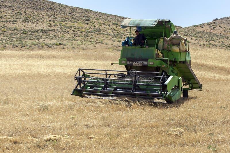 Жатка зернокомбайна на работе побеждая поле зерна на дороге от Azrou к Timahdite в Марокко стоковые изображения
