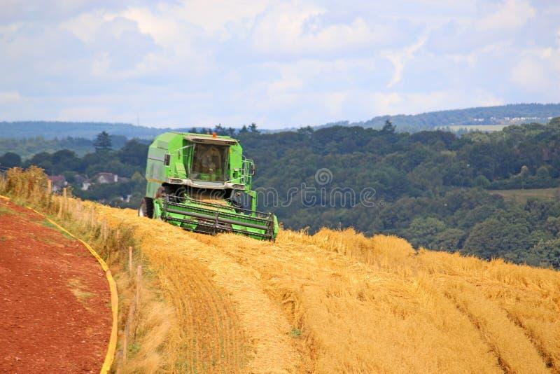Жатка зернокомбайна на работе стоковая фотография rf