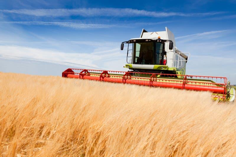 жатка зернокомбайна стоковое изображение rf