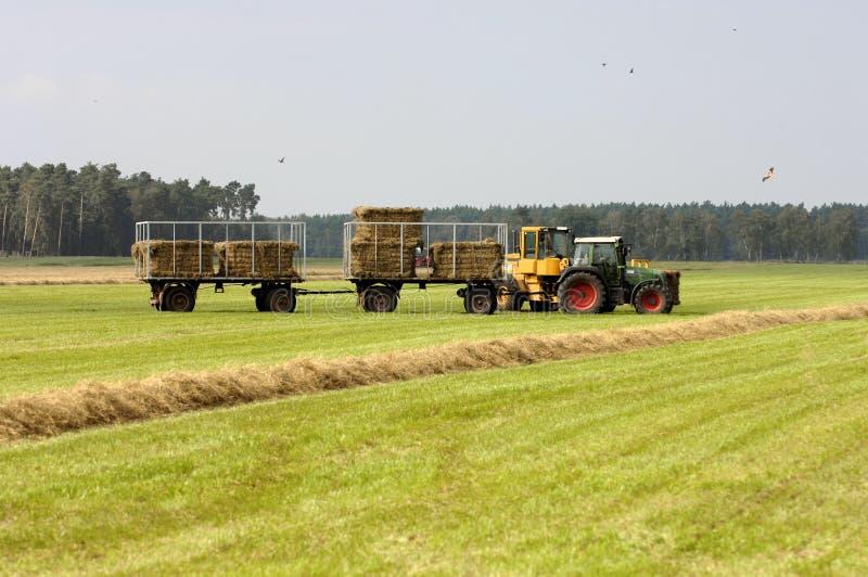 жать трактор сторновки стоковая фотография rf