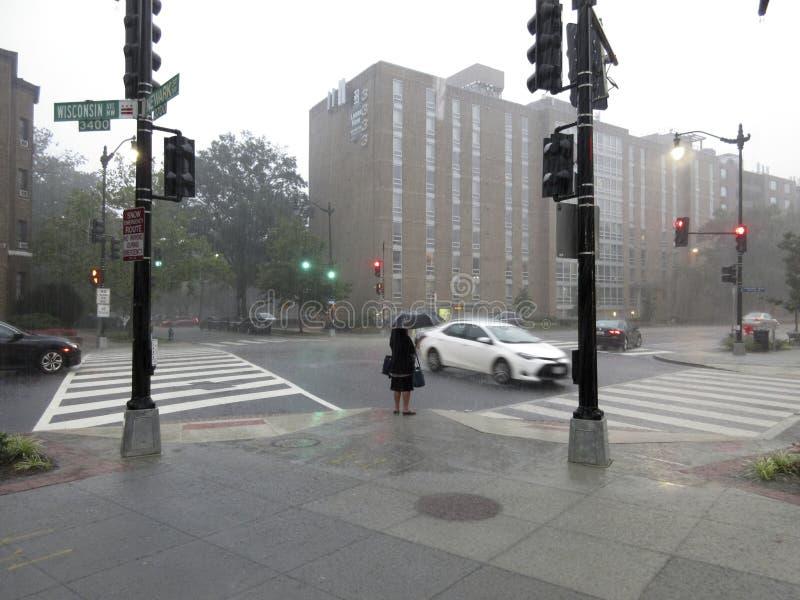 Ждать в дожде в DC Вашингтона стоковая фотография rf