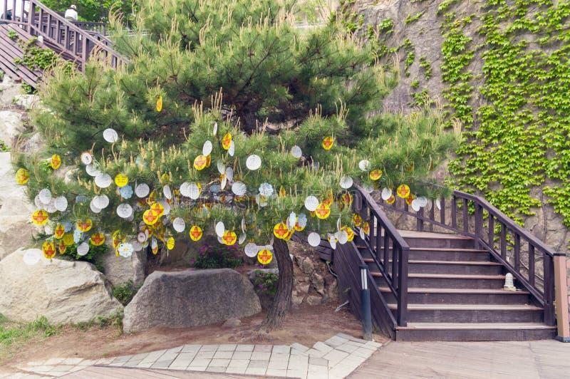 Желания на елевом дереве сделанном на китайский Новый Год петуха стоковые фотографии rf