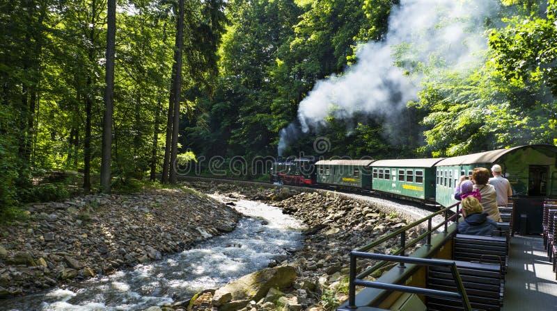 Железная дорога долины Weisseritz Езда поезда пара Саксония, Германия стоковое фото rf