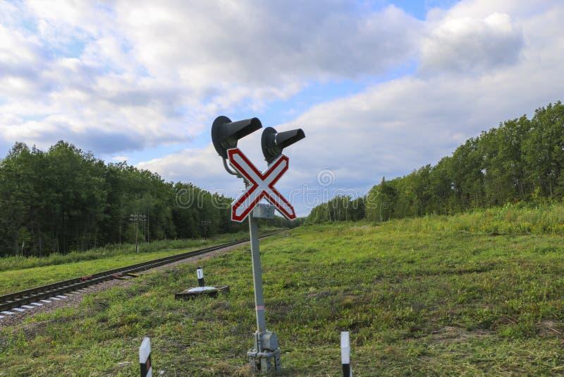 Железная дорога железнодорожные пути среди зеленых леса и травы пустые рельсы без поезда и людей стоковое изображение