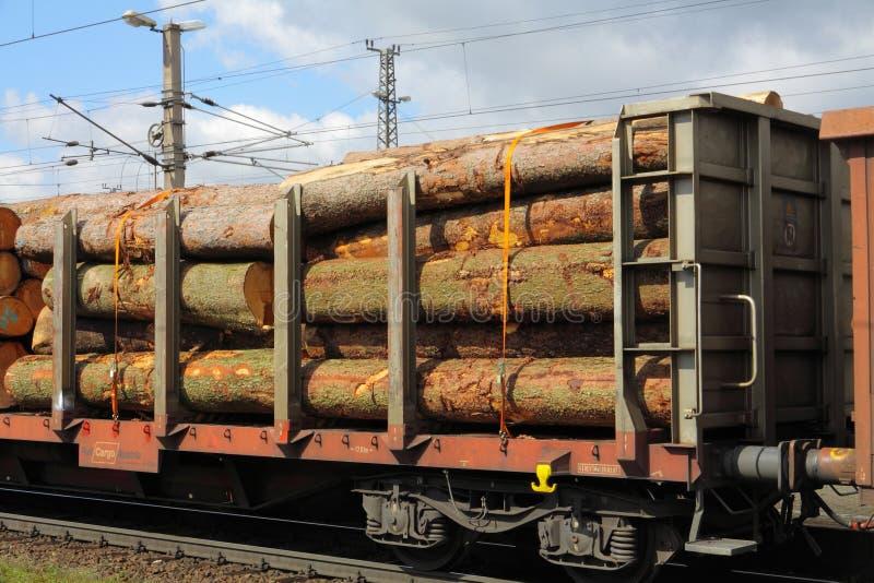 Железная дорога со швырком стоковое фото rf