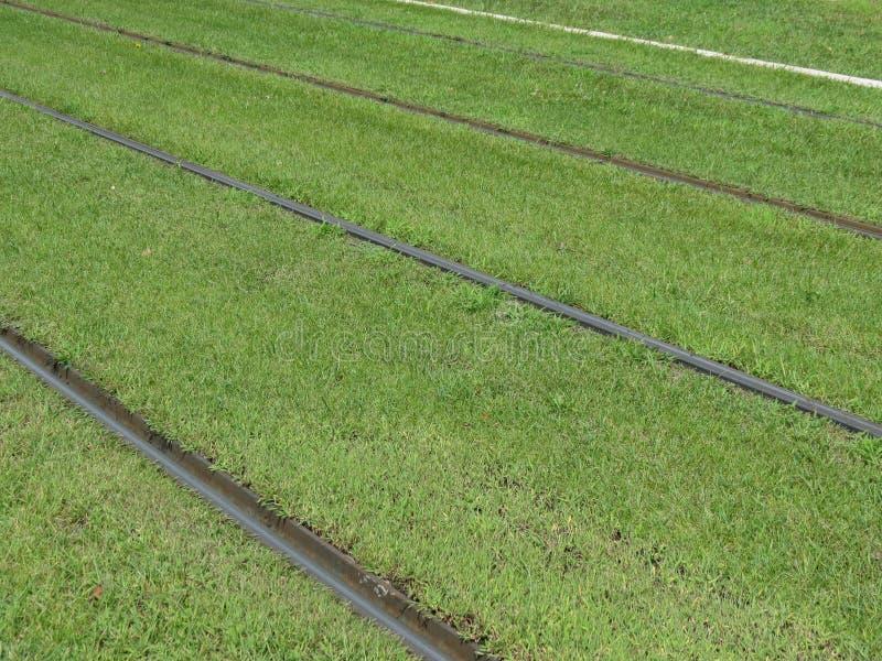 Железнодорожные пути трамвайной линии стоковое фото