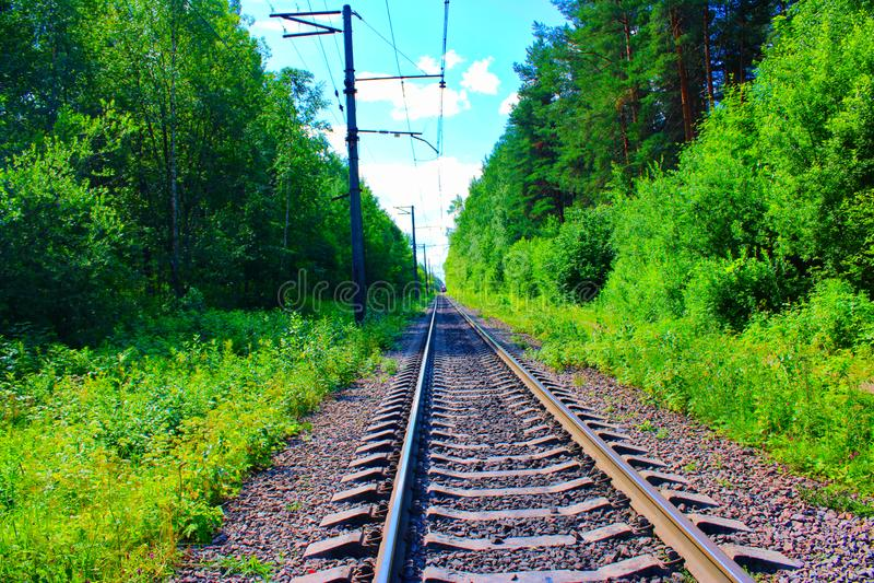 Железнодорожные пути через лес и причаливая поезд стоковое изображение