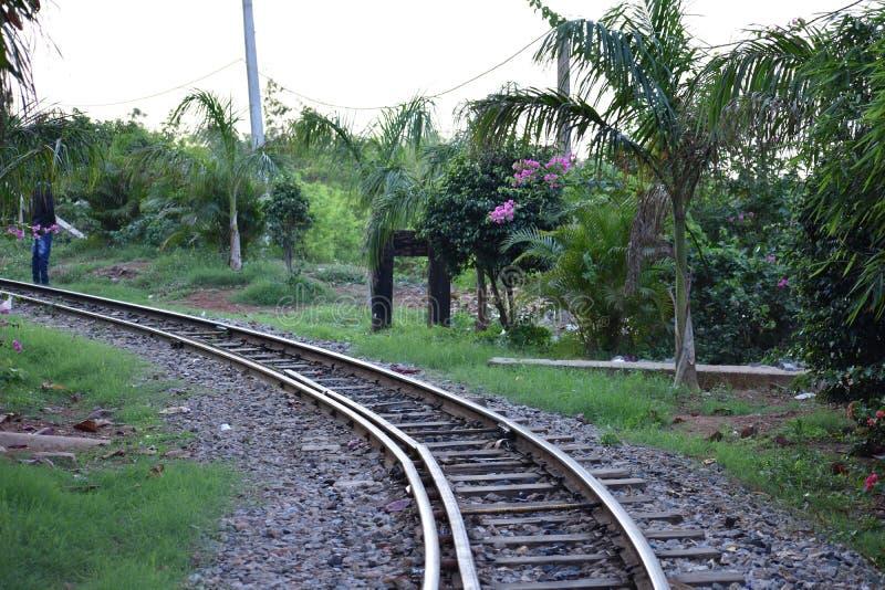 Железнодорожный путь на общественном парке стоковая фотография rf