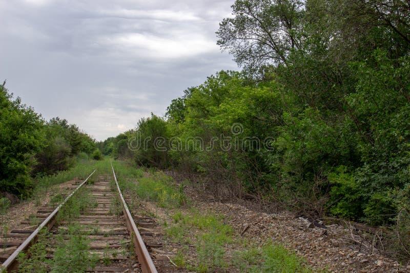 Железнодорожный путь пасмурного вечера старый среди деревьев и неба стоковые изображения rf