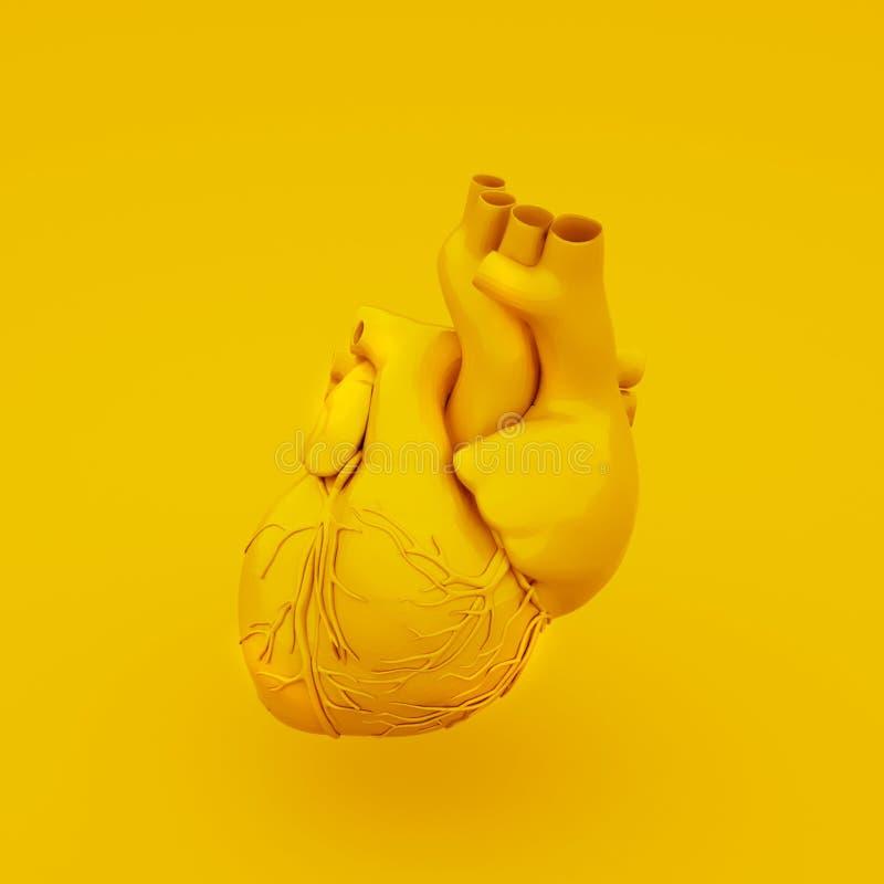 Желтая анатомическая концепция сердца : бесплатная иллюстрация