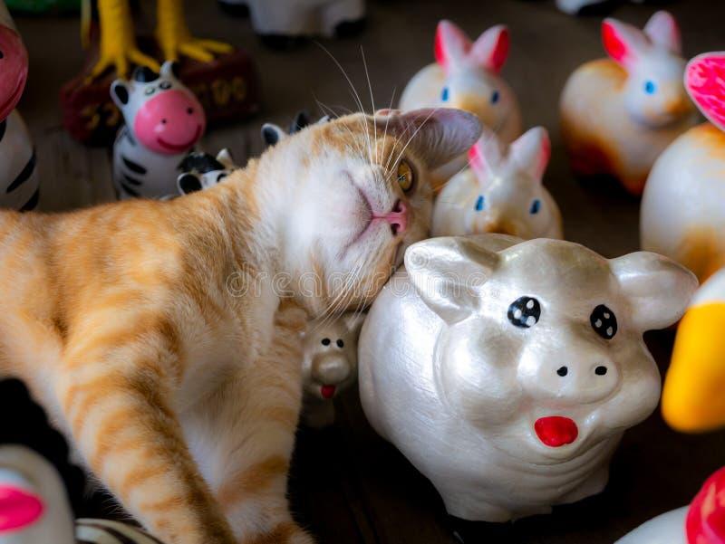 Желтая Белая Кити Спит Счастливо стоковые изображения rf