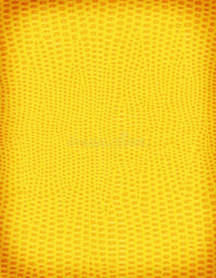 Желтая кожа ящерицы