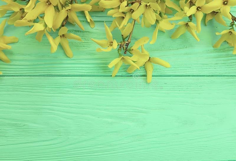 желтая свежая осень цветет граница на предпосылке текстуры мяты деревянной стоковое фото