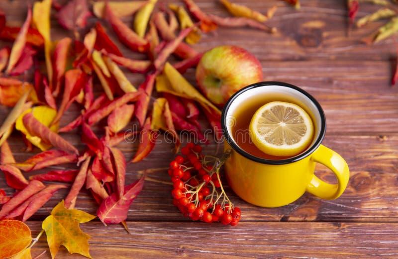 Желтая чашка чая с кусочком лимона, красочные красные и желтые осенние  стоковое изображение rf