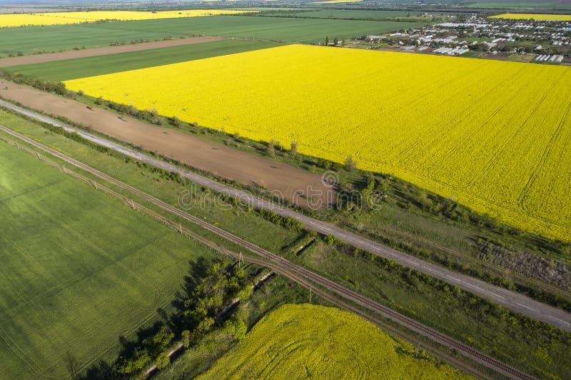 Желтые и зеленые поля рапса, вид с воздуха Сars идет на дорогу В расстоянии деревня стоковые фото