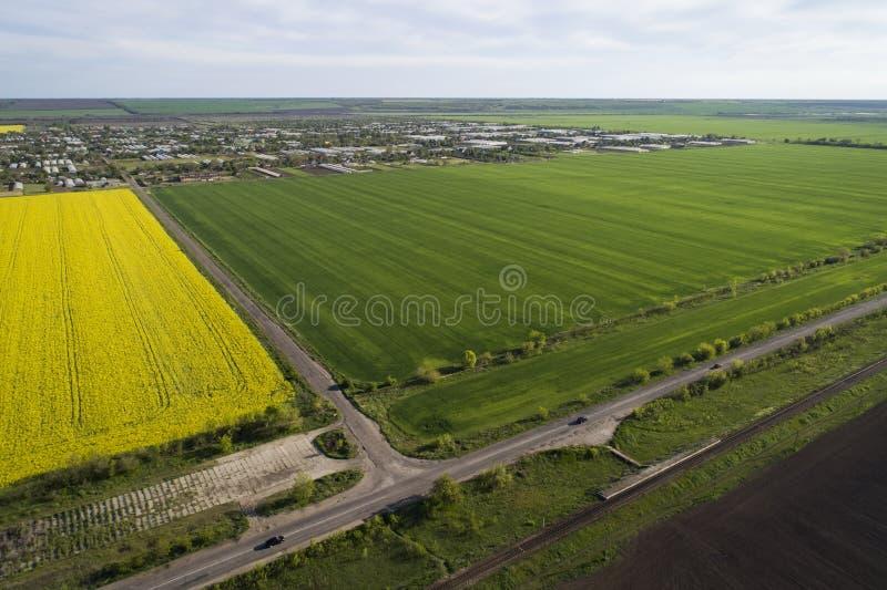 Желтые и зеленые поля рапса, вид с воздуха Сars идет на дорогу В расстоянии деревня стоковая фотография rf