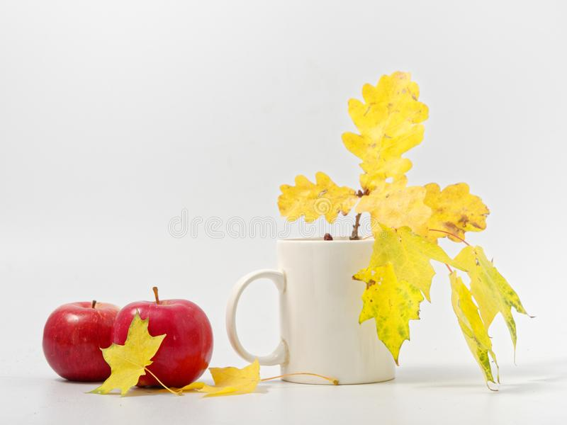 Желтые осенние листья с красными яблоками на белом фоне стоковое изображение rf