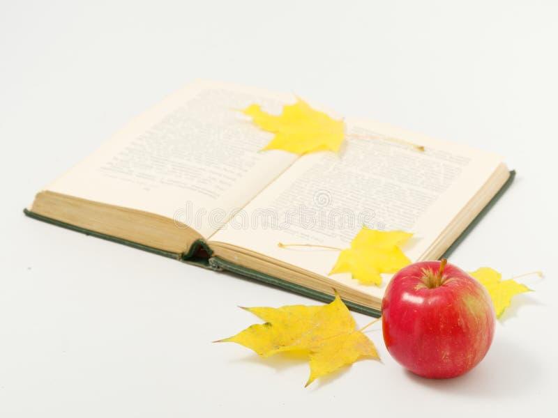 Желтые осенние листья с красными яблоками на белом фоне стоковые изображения rf