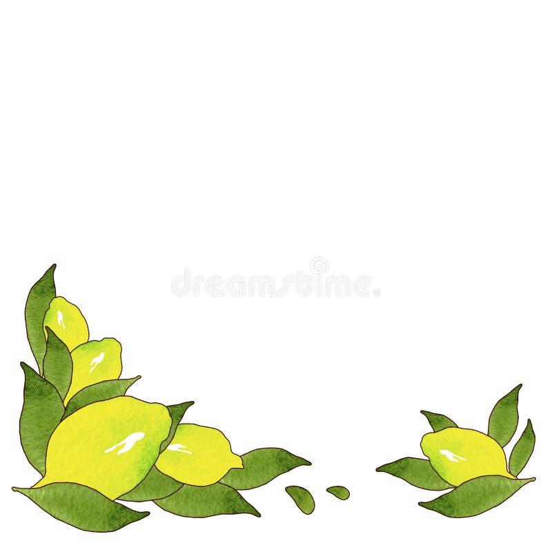 Желтые плоды лимона с зелеными листьями изолированными на белой предпосылке Акварель рисуя безшовную картину для дизайна иллюстрация вектора