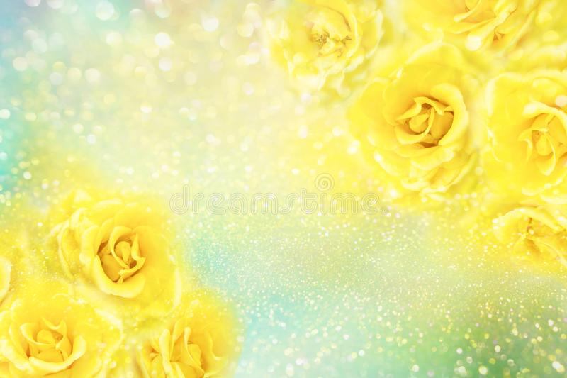 Желтые розы цветут мягкая романская предпосылка с красивым ярким блеском стоковые изображения rf