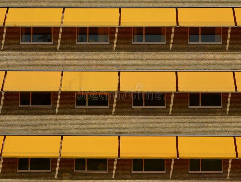 Желтые тени солнца стоковая фотография