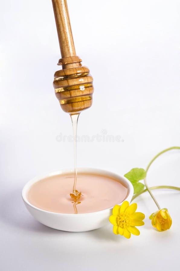 Желтые цветки и лить мед в белый шар стоковое фото