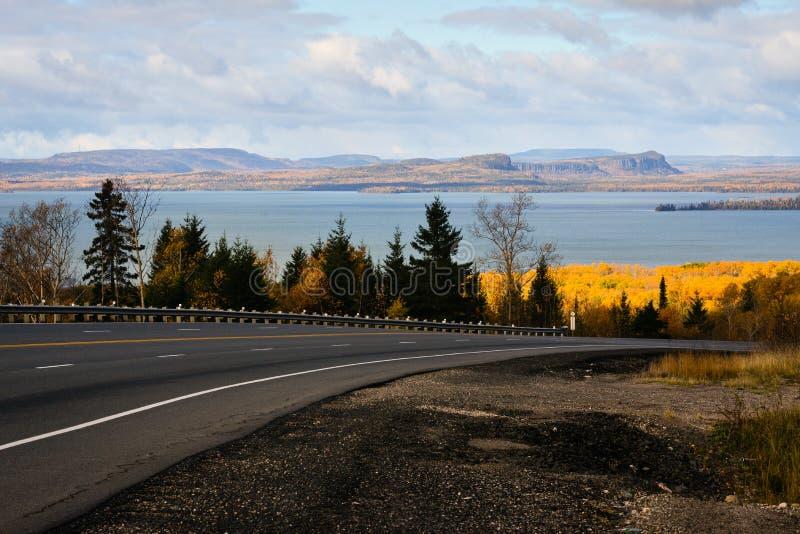 Желтые цветы, син, ветер, облака и путь стоковое изображение