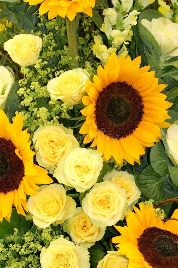 желтые цветы стоковая фотография