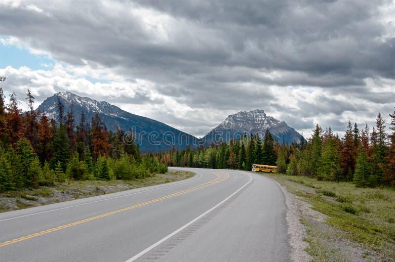 Желтый автобус идя от леса стоковая фотография rf